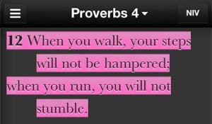 You Will Not Stumble